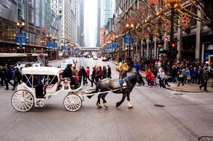 芝加哥精品一日游